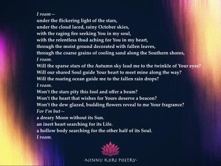 """I Roam."" ©Ninnu Kori Poetry and @ninnukoripoetry, 2017. (Comment, Like, Tag, Share, Enjoy!) Tag: #ninnukoripoetry Instagram/Twitter: @ninnukoripoetry"